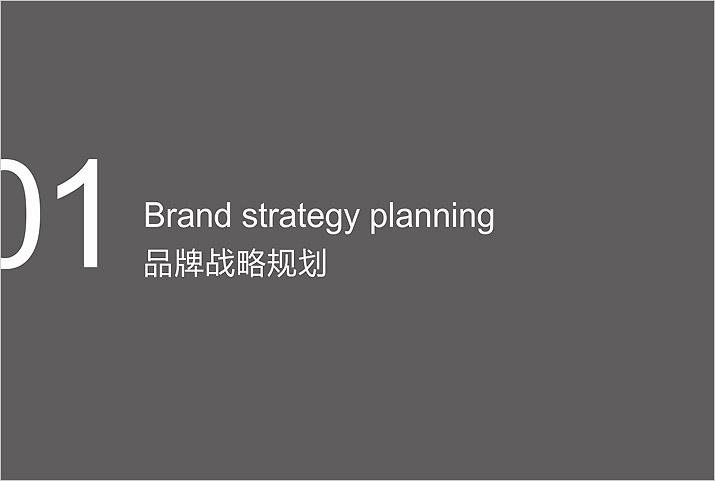 企业形象策划品牌战略规划。