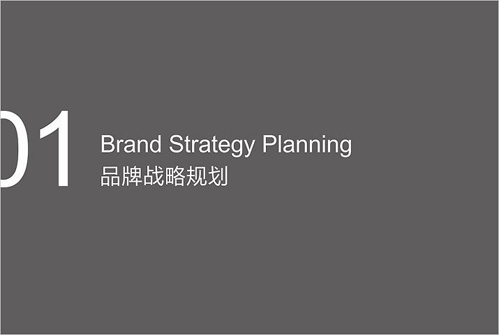 市场定位策划品牌战略规划。