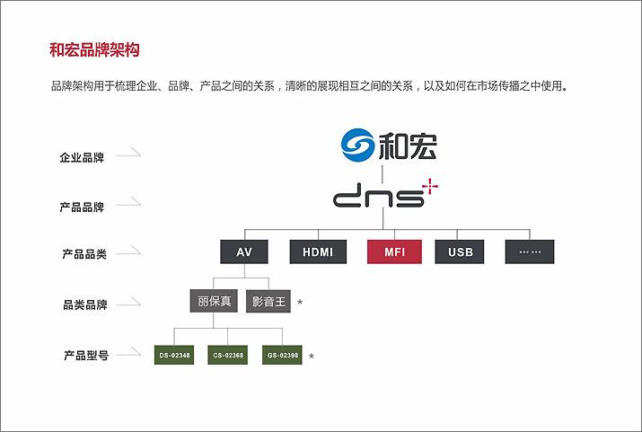 DNS和宏企业内部分析