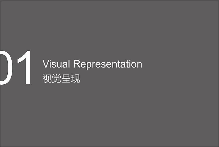 专业品牌设计视觉呈现