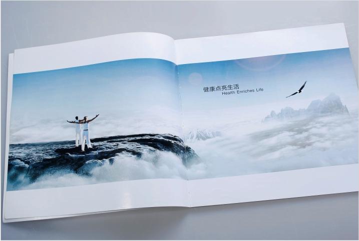 宣传册设计内页展示。